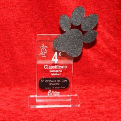 Targhe e trofei per expo canine